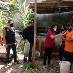 Penyerahan bibit Ikan Nila untuk mendukung ketahanan pangan pandemi Covid19 di Kelurahan Renon, Denpasar Selatan, Selasa (27/10/2020). Foto: Lintasnusanews.com/Ist