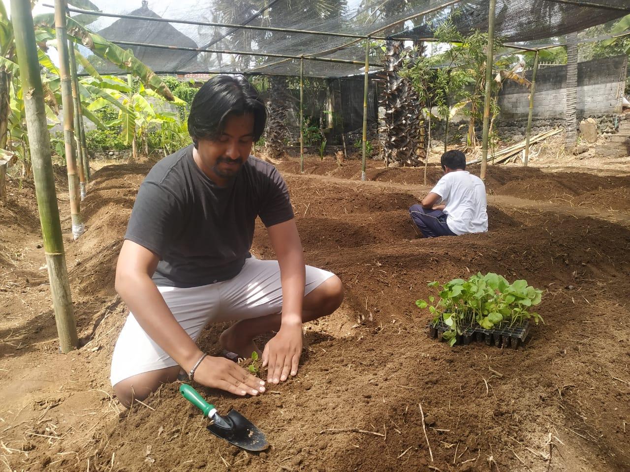 Salah satu penggagas Kebun Indonesia Raya, Yoga Fitrana Cahyadi saat berada di lahannya Desa Seraya Karangasem Bali. Foto: Lintasnusanews.com/Ist