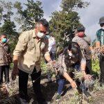 Bupati Sikka mendorong pertanian hortikultura saat panen bawang raya bawang merah di Desa Egon Gahar, Selasa (24/08/2021). Foto: Lintasnusanews.com/Karel Pandu